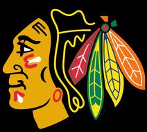 chicago-blackhawks-the312limo