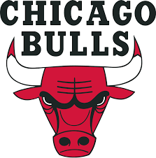 chicago-bulls-the312limo
